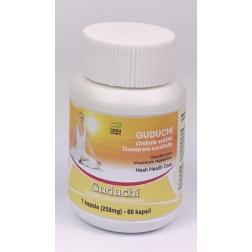 GUDUCHI kapsle 60 ks/ 250 mg HESH