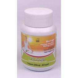MORINGA kapsle 60 ks/ 250 mg HESH