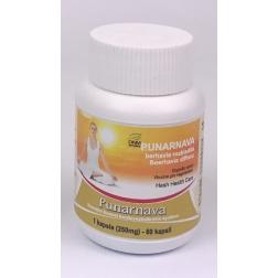 PUNARNAVA - GUGGUL kapsle 60 ks / 250 mg HESH