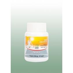 AMLA ajurvédské kapsle 60 ks/250 mg HESH