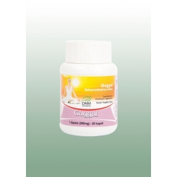 GUGUL  ajurvédské kapsle 60 ks/250 mg HESH