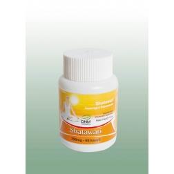 SHATAWARI ajurvédské kapsle 60 ks/250 mg DNM