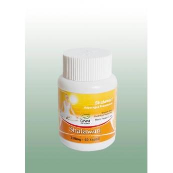 https://www.bharat.cz/397-thickbox/shatawari-ajurvedske-kapsle-60-ks-250-mg-dnm.jpg